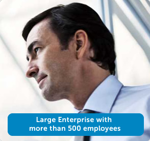 More than 500 employees in your organization.