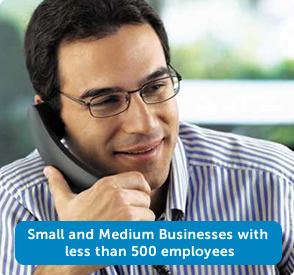 Less than 500 employees in your organization.